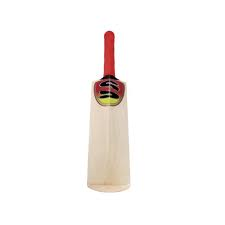 Surridge Fielding Bat