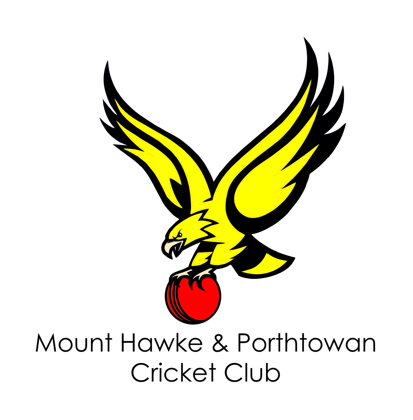 Mount Hawke & Porthtowan Cricket Club